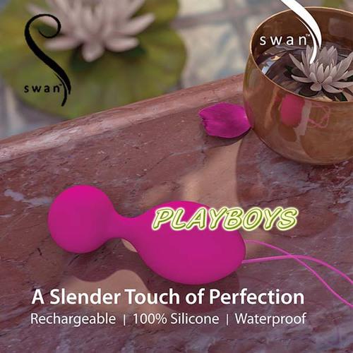 加拿大 SWAN-The Swan Clutch 天鵝掌握 聰明球球 頂級奢華鍛鍊器
