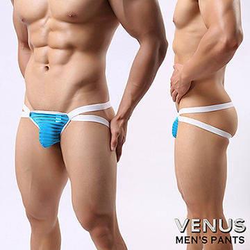 VENUS 網紗條紋 男士雙丁 性感情趣 透明丁字褲 藍